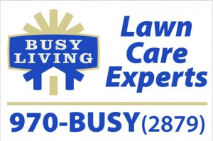 Busy Living Lawn Care